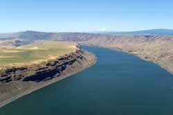 Columbia River with Mt. Adams in the Background